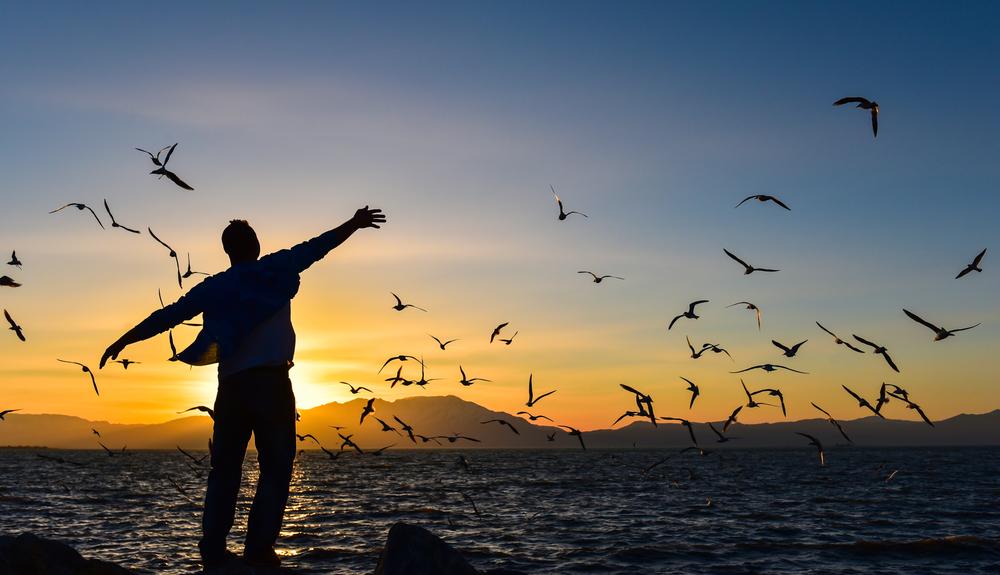 Özgürlük – sorumluluk sınırı ne olmalı?