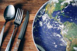 Bir insan hakları meselesi olarak gıda erişimi