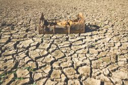 İklim değişikliği Ortadoğu'daki çatışmaları nasıl şiddetlendirebilir?