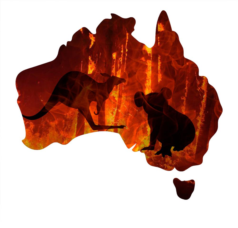 Avustralya, Aborjinleri anlayamamış olmanın bedelini ödüyor