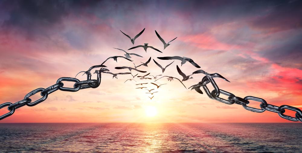 Affet ve özgürlüğünü kazan