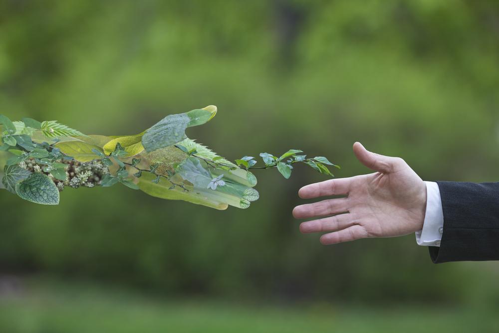 Geleceğimiz için ekonominin doğadan alması gereken ders ne?